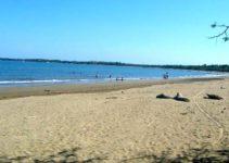 Playa El Tamarindo